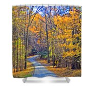 Back Road Fall Foliage Shower Curtain
