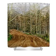 Back Road Home Shower Curtain