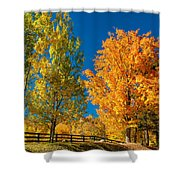Back Road Rambling Shower Curtain