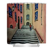 Back Street In France Shower Curtain