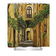 Back Street In Italy Shower Curtain by Charlotte Blanchard