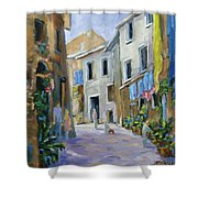 Back Street Shower Curtain