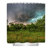 Back To Life - Spring Returns To Western Texas Shower Curtain