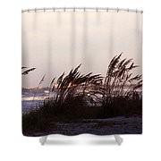 Back To The Shores Shower Curtain