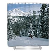 Backcountry Skiing Into An Evergreen Shower Curtain