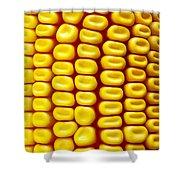Background Corn Shower Curtain