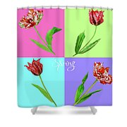 Background With Tulips Shower Curtain