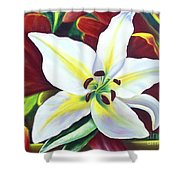 Backlit Lilly Shower Curtain