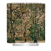 Backlit Moss-covered Trees Caddo Lake Texas Shower Curtain