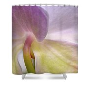 Backlit Orchid Shower Curtain