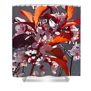 Backlit Pink Tree Blossoms Shower Curtain