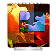 Backlit Roses Shower Curtain