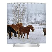 Backs To The Wind Shower Curtain