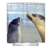 Backtalk Shower Curtain