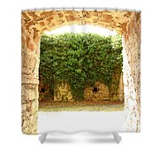 Backyard Shower Curtain