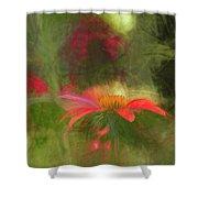 Backyard Coneflower Shower Curtain