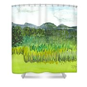 Backyard In Barton Shower Curtain