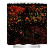 Backyard Lanterns Shower Curtain