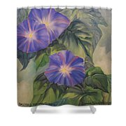 Backyard Morning Glories Shower Curtain