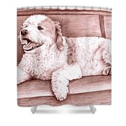 Baco Shower Curtain