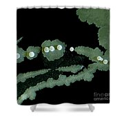Bacterial Colony, Lm Shower Curtain
