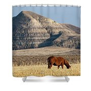 Badlands Canada Saskatchewan Shower Curtain