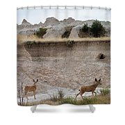 Badlands Deer Sd Shower Curtain