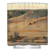 Badlands Prairie Reverie Shower Curtain