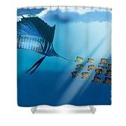 Bahama Beauty Shower Curtain