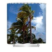 Bahamian Breeze Shower Curtain