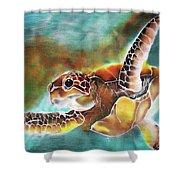 Bahamian Turtle Dove Shower Curtain