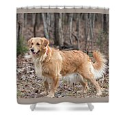 Bailee The Golden Shower Curtain