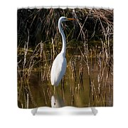 Bailey Tract Egret Two Shower Curtain