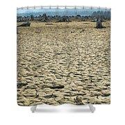Baker Lake Desert  Shower Curtain