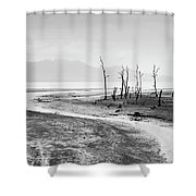 Bako National Park At Low Tide. Shower Curtain