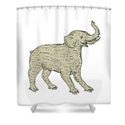 Baku Side Drawing Shower Curtain