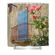 Balcony And Roses Shower Curtain
