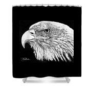 Bald Eagle #4 Shower Curtain