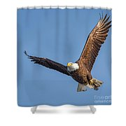 Bald Eagle And Fish Shower Curtain