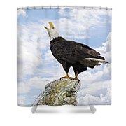 Bald Eagle Art - Speak Your Voice Shower Curtain