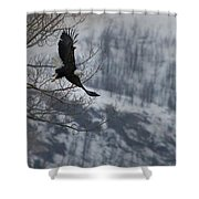 Bald Eagle In Flight-signed-#4014 Shower Curtain