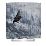 Bald Eagle In Flight-signed-#4016 Shower Curtain