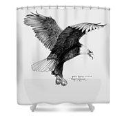 Bald Eagle Landing Shower Curtain