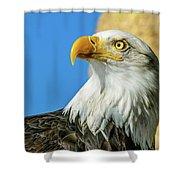 Bald Eagle Profile 4 Shower Curtain