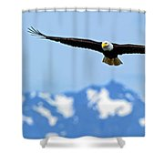 Bald Eagle Soars Over Hood Canal Shower Curtain