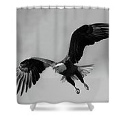 Bald Eagle Symbol Of Strength Shower Curtain
