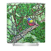 Bald Head Island, Painted Bunting At Defying Gravity Shower Curtain