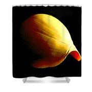 Baler Shell Shower Curtain