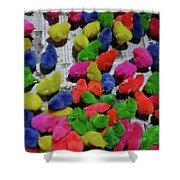Bali Coloured Chicks Shower Curtain