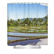 Bali Rice Paddies Shower Curtain